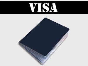 a2de7c_visa.jpg